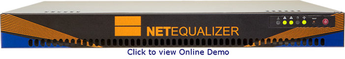 NetEqualizer Online Demo